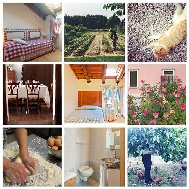 イタリアでアグリツリズモに泊まる旅 リピーターはもちろん初めての方も田舎ツアー